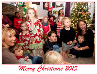 2015 Johnson Family Christmas Party